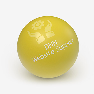 DNN Website Support