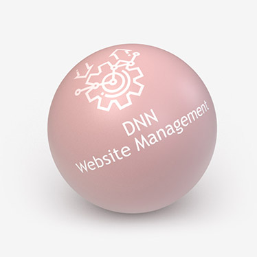 DNN Website Management